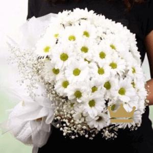Beyaz papatya buketi Sadelik ve asil çiçek papatya kendine özgü kokusuyla papatya buketi içlerinde sevgi goncaları mis kokulu kır çiçekleri